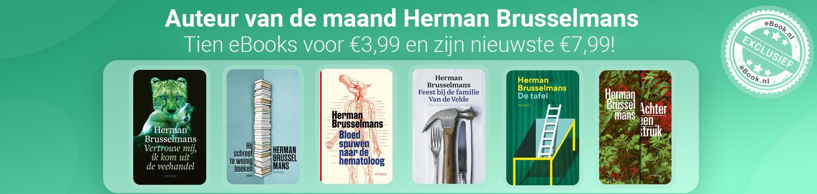 Auteur van de maand: Herman Brusselmans