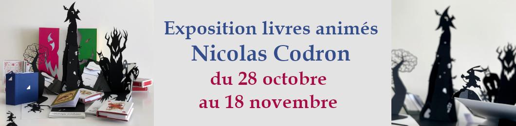 Exposition Nicolas Codron