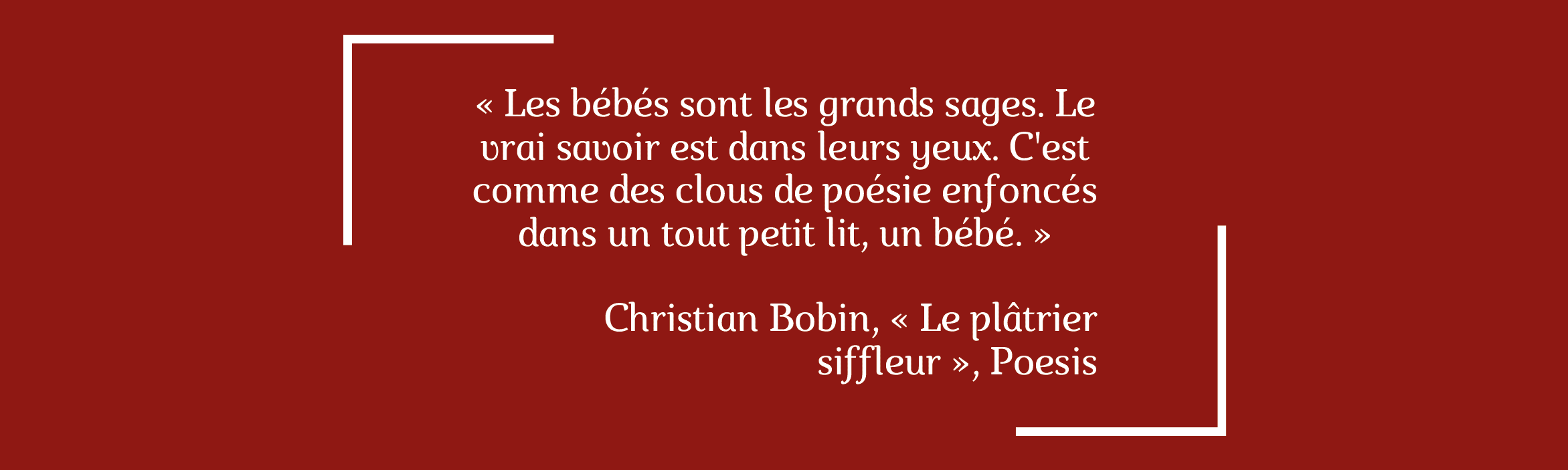 Le plâtrier siffleur - citation