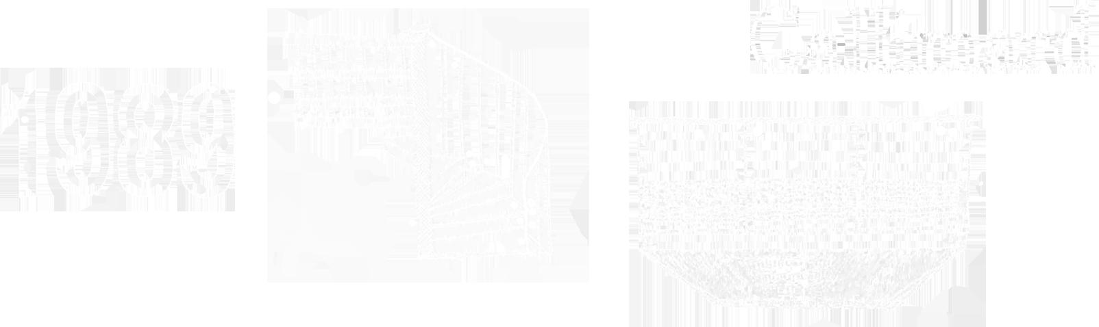 Les travaux dans la Librairie de Paris