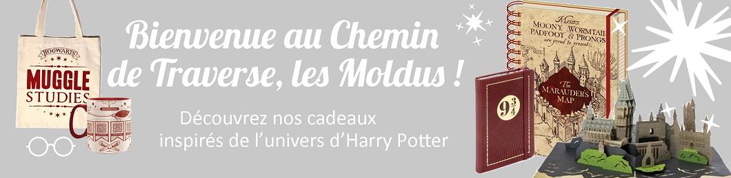 Cadeaux inspirés de l'univers d'Harry Potter