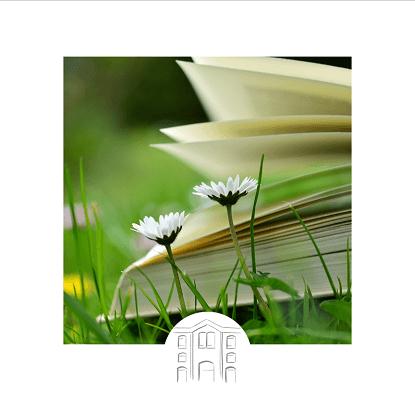 Trouvez le livre qu'il vous faut dans toutes nos sélections : Prix Littéraires, romans policiers, romans et littérature, BD, mangas, livres jeunesse, scolaire, ...