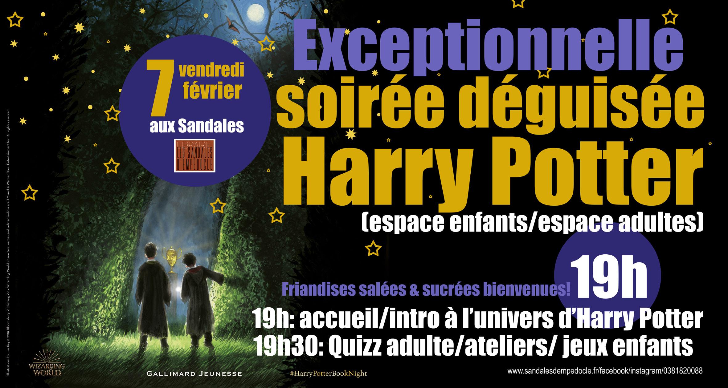 EXCEPTIONNELLE soirée déguisée Harry POTTER!