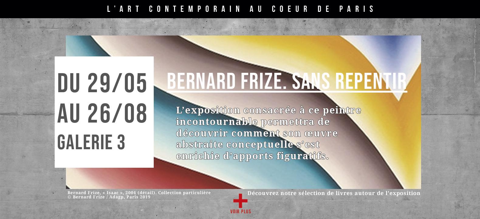 Bernard Frize