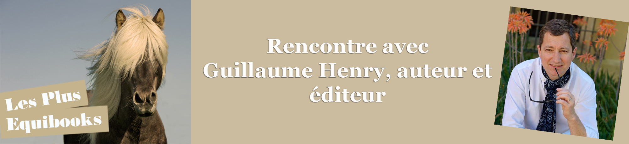 n°1 / Rencontre avec Guillaume Henry, auteur et éditeur