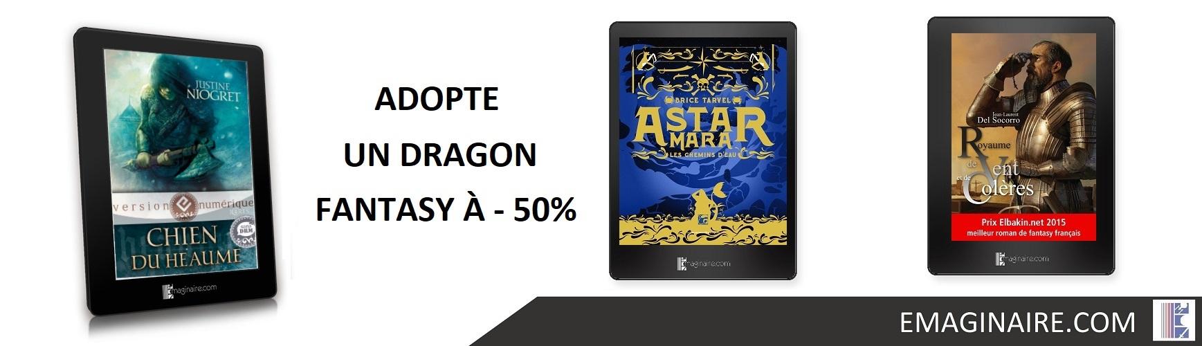 adopte dragon 01