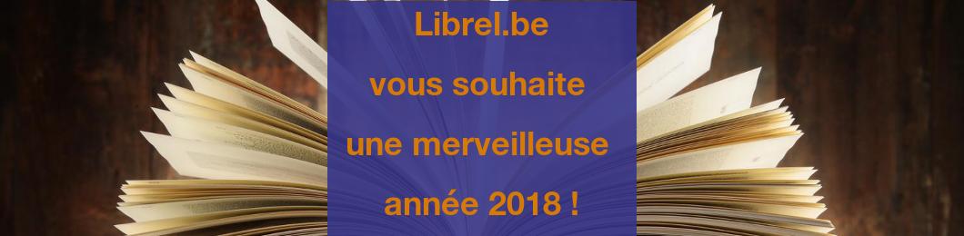 Voeux 2018 - bonne année !