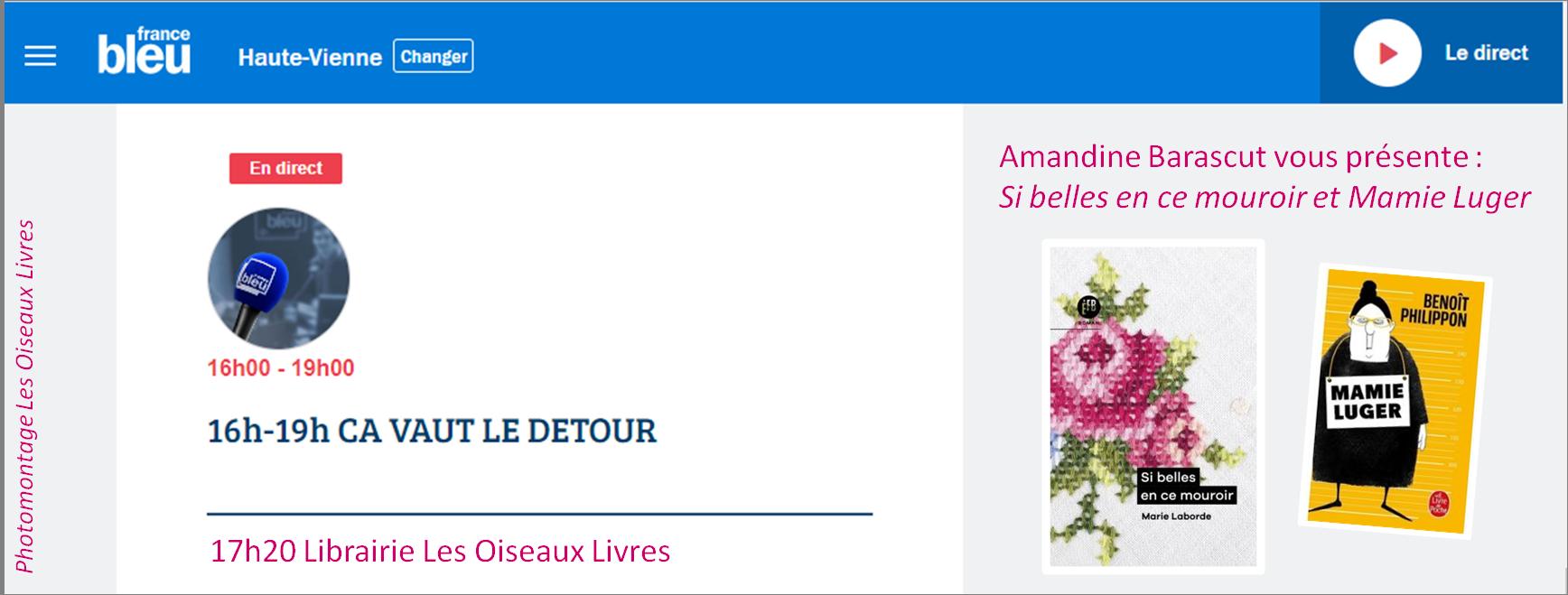 Les conseils de lecture des Oiseaux Livres sur France Bleu Limousin