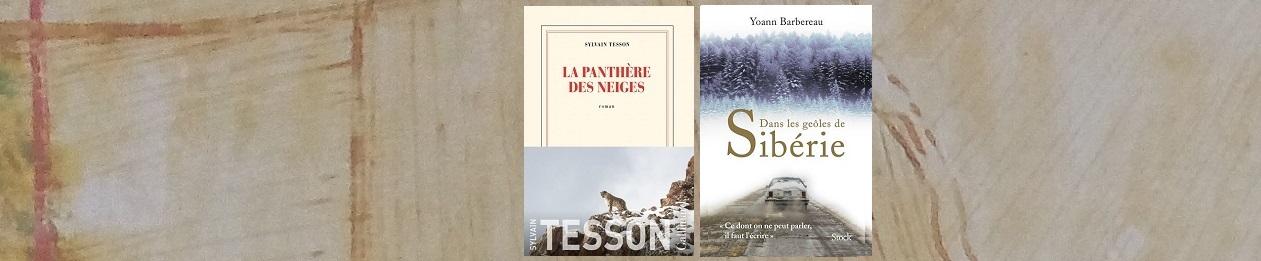 Yoann Barberau & Sylvain Tesso