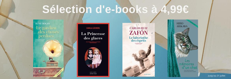 Sélection d'e-books à 4,99 €